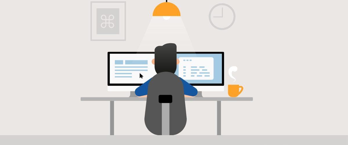 life of software developer