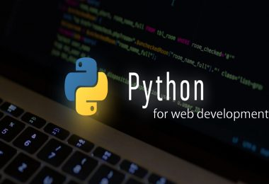 python for web development